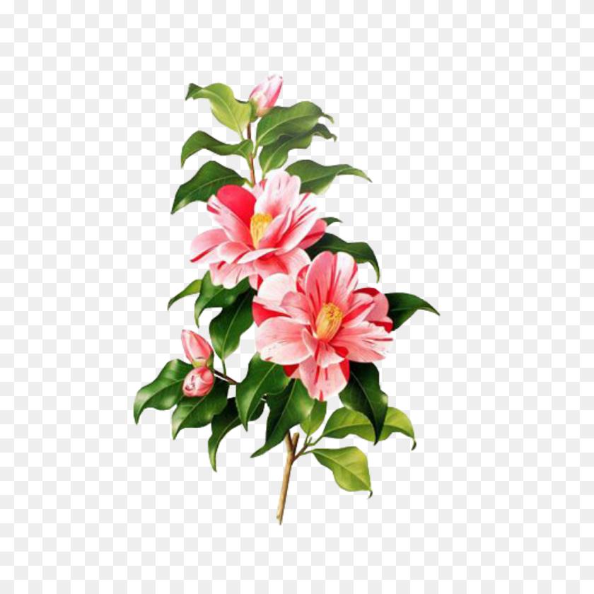 Flor Flower Emoji Overlay Edit Png - Flower Overlay PNG
