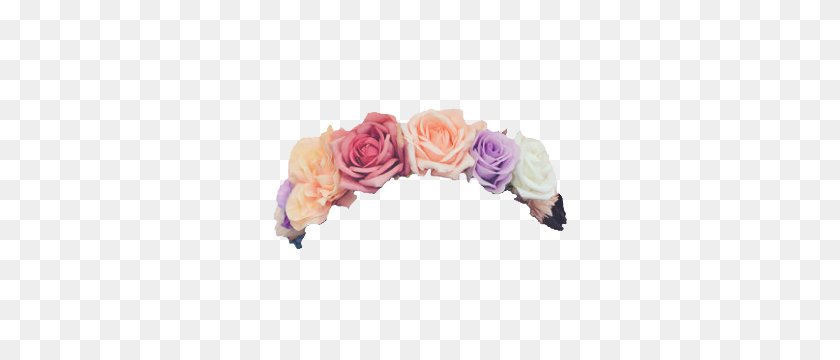 300x300 Flowers Flower Floral Crowns Crown Roses Rose - Pink Flower Crown PNG