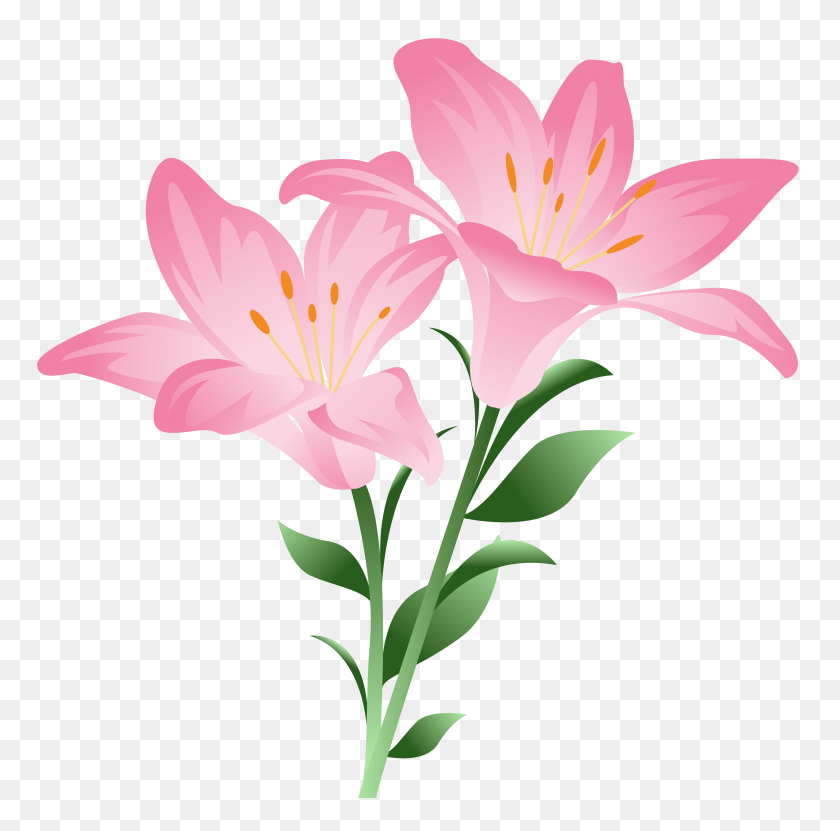 Flowers Lilium, Flowers - Pink Watercolor Flowers PNG