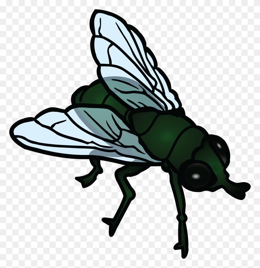 Fly Clipart - Cute Bug Clipart