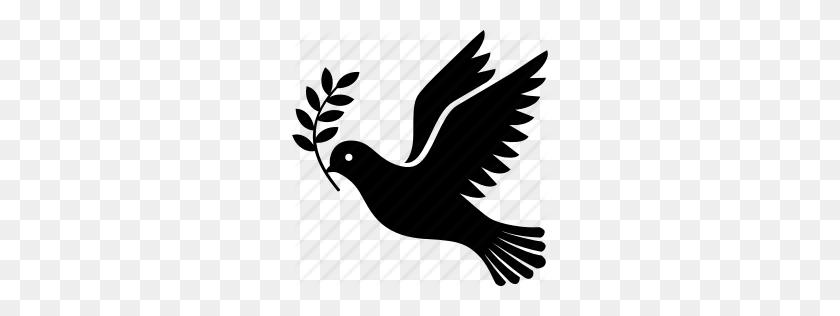 Flying Dove Vector Png, Bird Birds Dove Doves Flight Fly Flying - Doves Flying PNG
