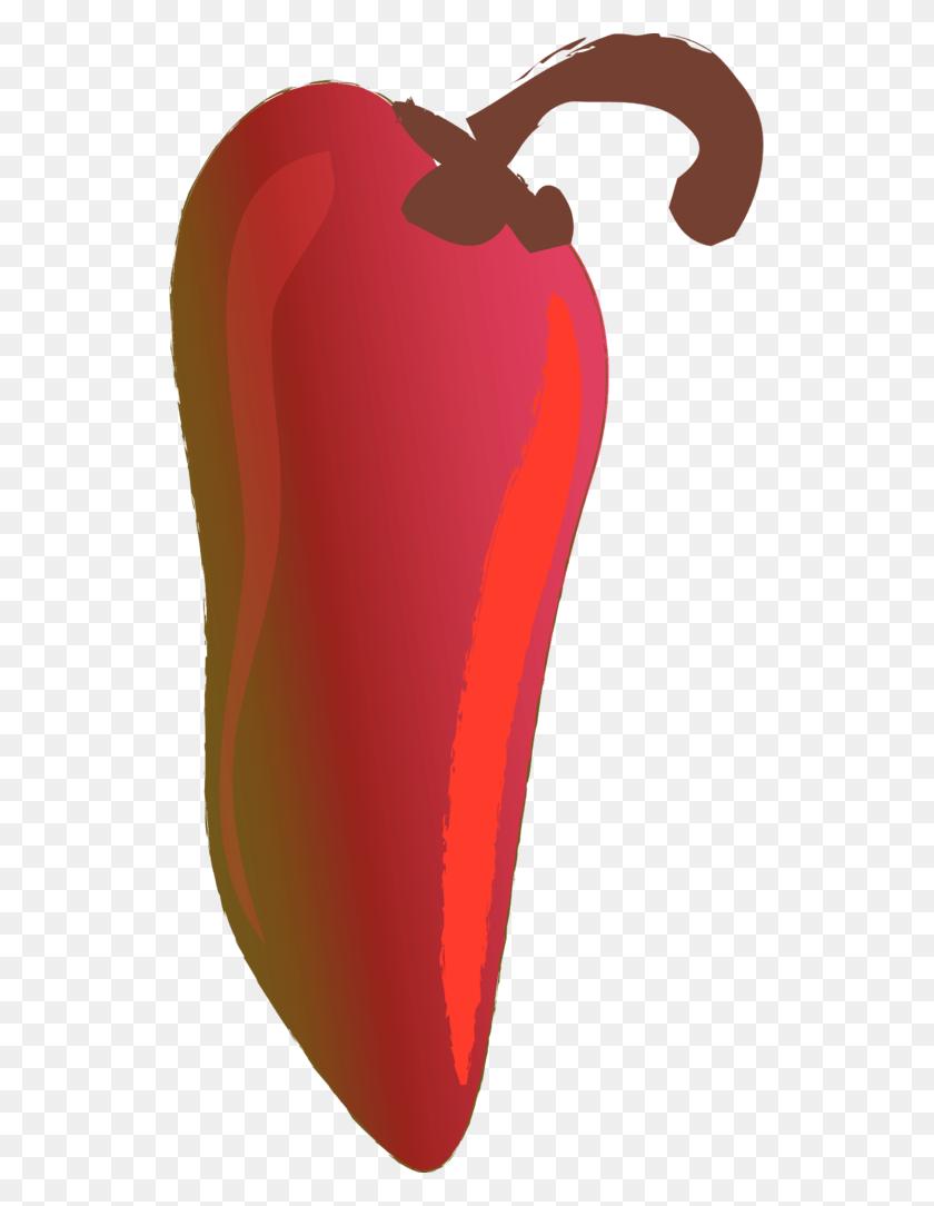 Food Clipart Chili Con Carne Serrano Pepper Chili Pepper Fruit Png - Chili Clipart