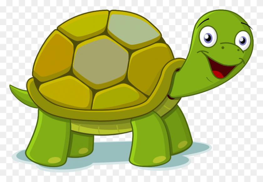 Free Clip Art Cartoon Turtle Cute Sea Turtle Clipart Stunning