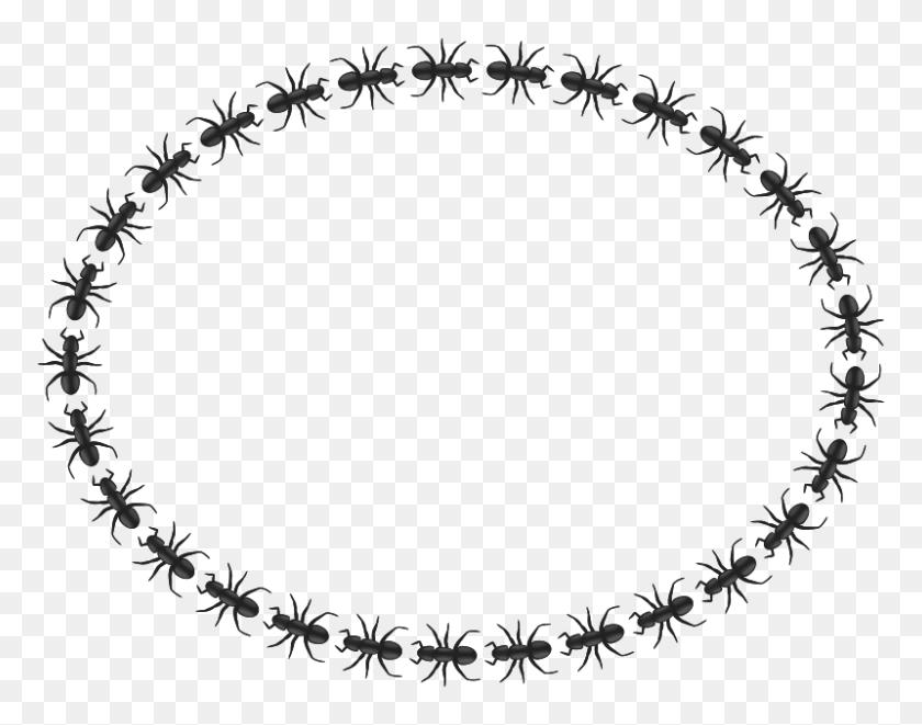 Free Clipart Ant Border Oval Pitr - Oval Border Clip Art