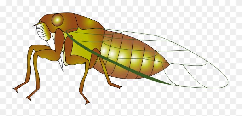 Free Clipart Cigale Presquesage - Termite Clipart