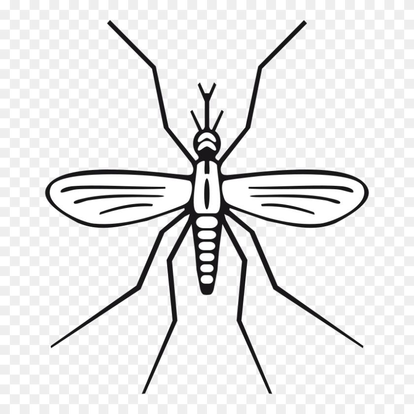 Free Clipart Mosquito Rewarriner - Mosquito Clip Art