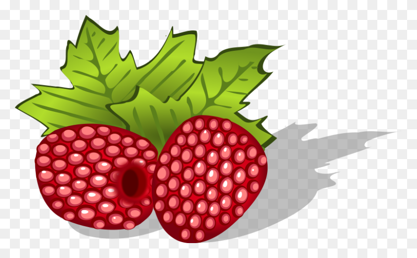 Marvelous Berry Clipart Two Blackberries Free Clip - Blackberry Clipart -  Free Transparent PNG Clipart Images Download