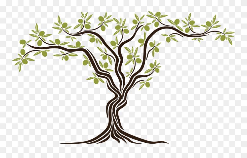 Free Download Kb, Olives On The Tree Bark - Tree Bark Clipart