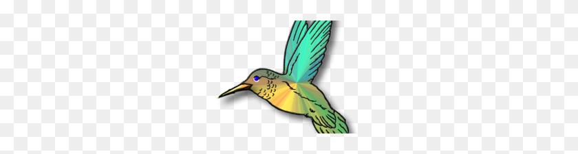 Free Hummingbird Clipart Hummingbird Clip Art Hummingbird Clip Art - Hummingbird Clipart