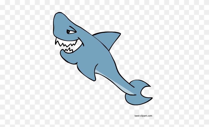 Free Marine Animals, Ocean Animals Or Under Water Animals Clip Art - Shark Clipart Transparent