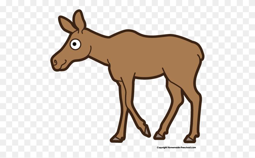 509x461 Free Moose Clipart - Mammals Clipart