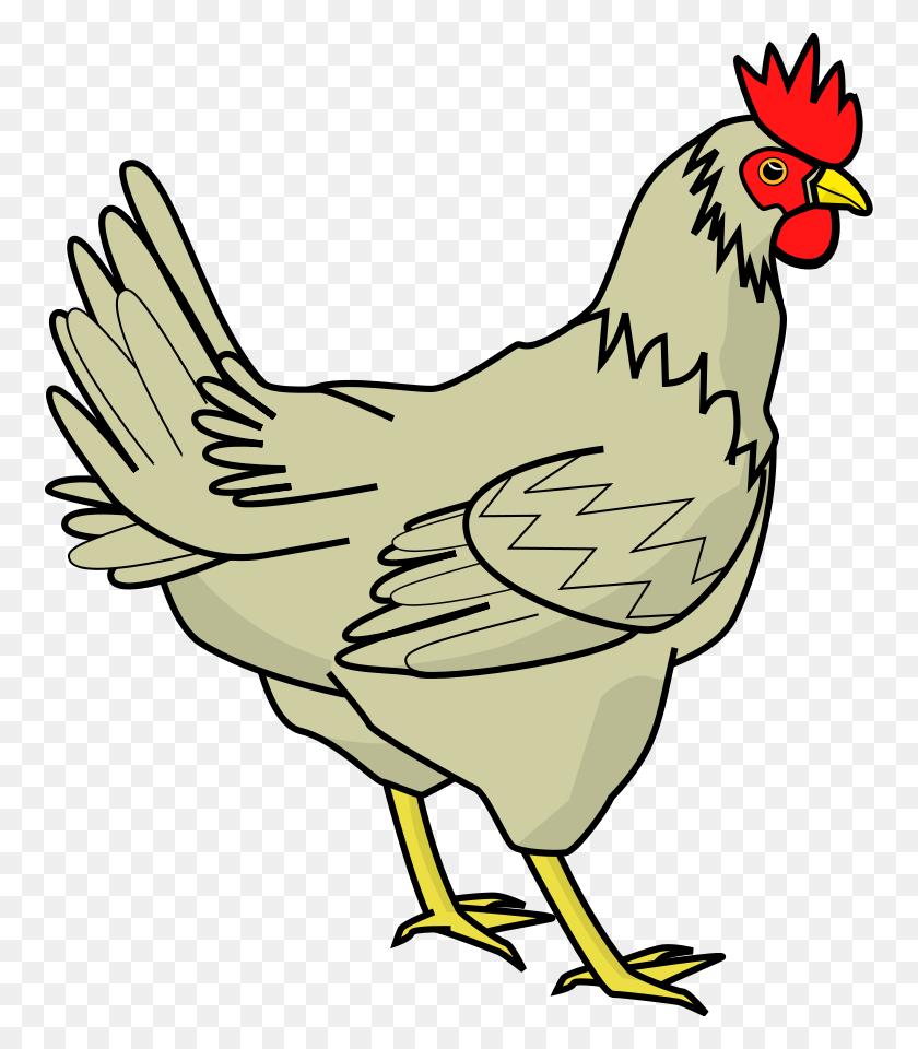 Free Png Hen Transparent Hen Images - Chicken Clipart Transparent