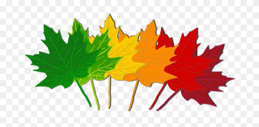 Free September Leaves Clipart Image November Clip - November Clipart