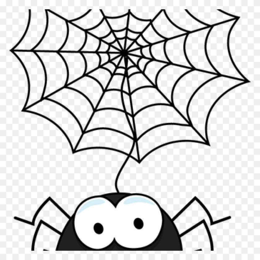 Spider Clip Art For Web