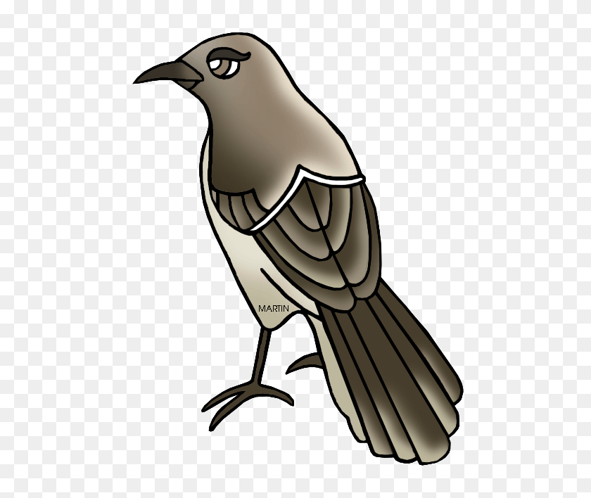 Free Vector Mockingbird Clip Art Clipart - Mockingbird Clipart
