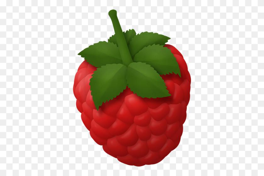 Fruity Cutie Berries Album, Fruit And Raspberry - Berries PNG