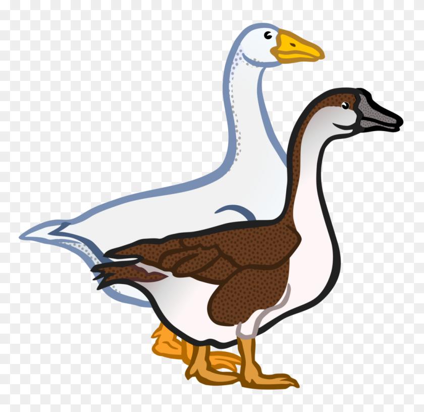 Gaense Coloured Clip Art Goose - Magpie Clipart