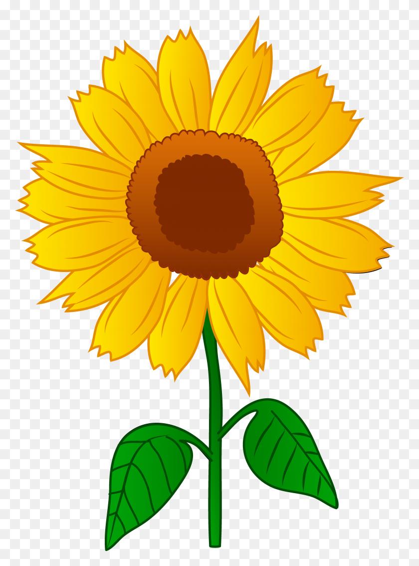 Garden Clipart Sunflower Garden - Garden Border Clipart