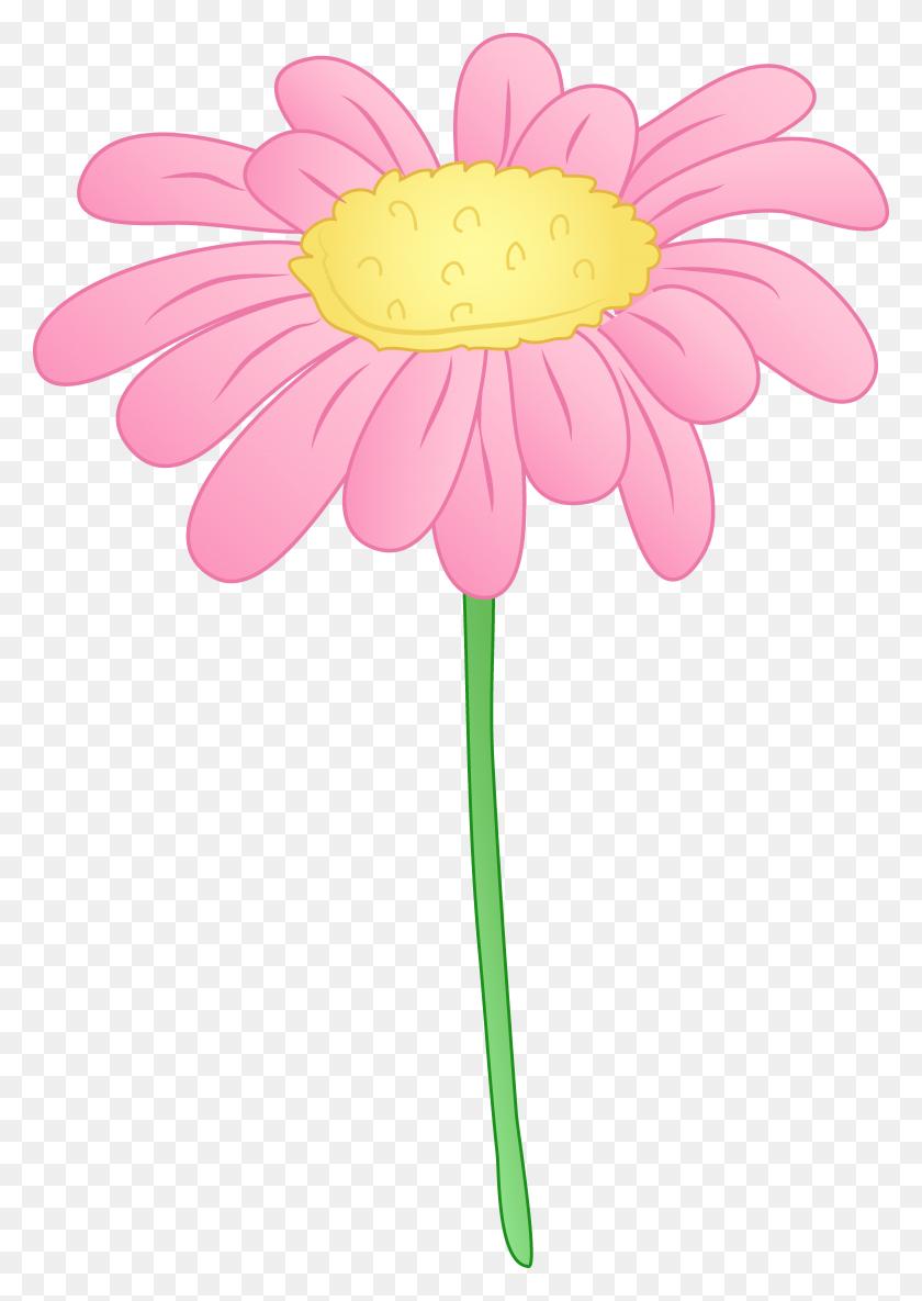 Gerbera Daisy Cliparts - Gerber Daisy Clip Art