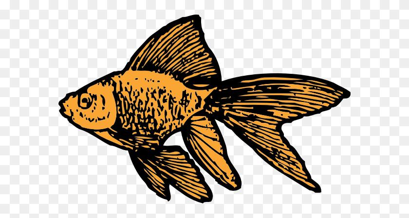 Goldfish Clip Art - Goldfish Clipart Black And White