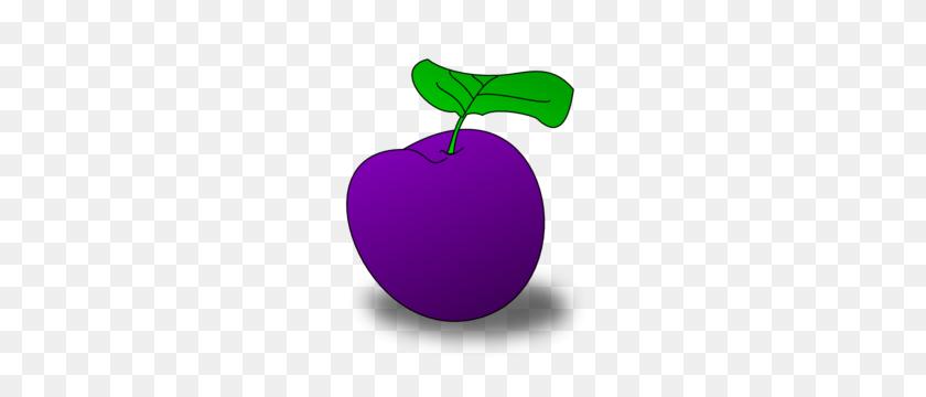 Grape Vine Clipart Grape Fruit Clip Art - Grape Vine Clipart