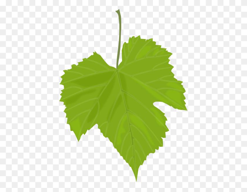 Grape Vine Leaves Clip Art Grape Leaf Clip Art Betty Tellier - Grape Vine Clipart