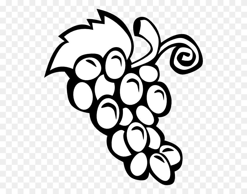 Grapes Clipart Preschool - Preschool Clipart Black And White