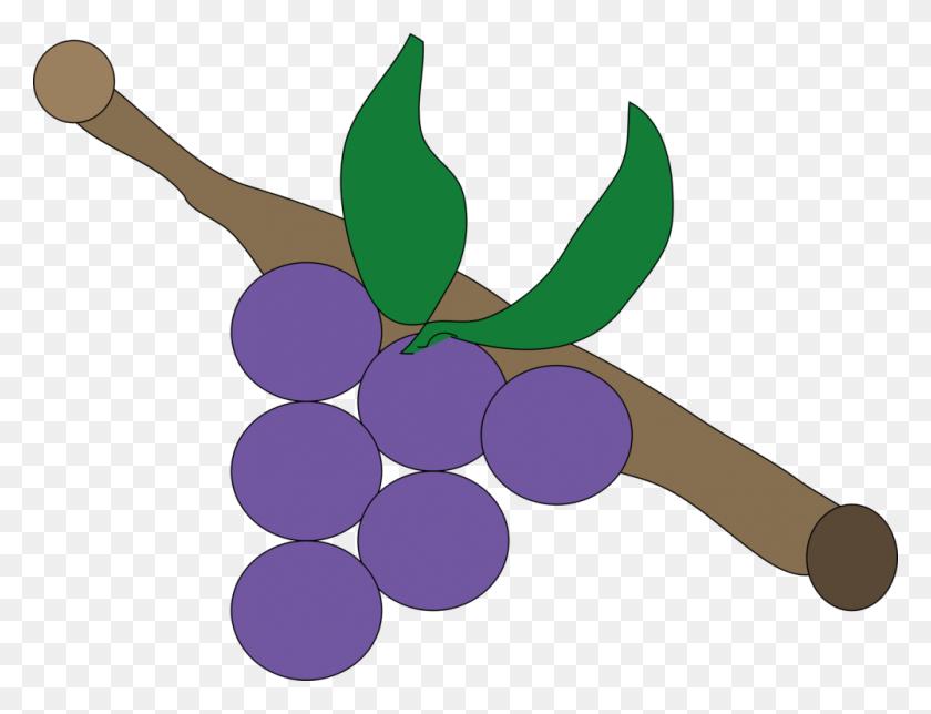 Grapevines Oregon Grape Grape Leaves Drawing - Oregon Clip Art