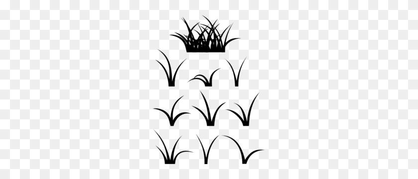 Grass Clipart Plains - Mangrove Clipart