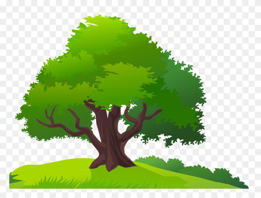 Grass Clipart Tree - Birch Tree PNG
