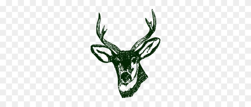 Green Stag Head Clip Art - Reindeer Head Clipart
