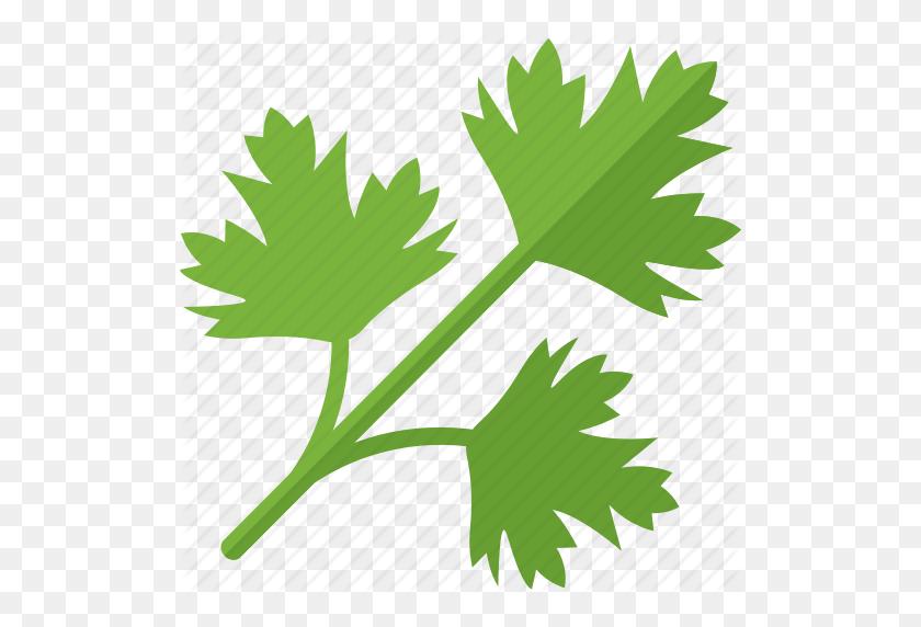 512x512 Greenery, Plant, Sheet, Stalk Icon - Greenery PNG