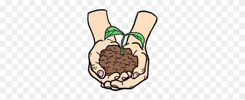 Growing Trees En, Enviromental Studies, Growing Trees, Planting - Planting Trees Clipart