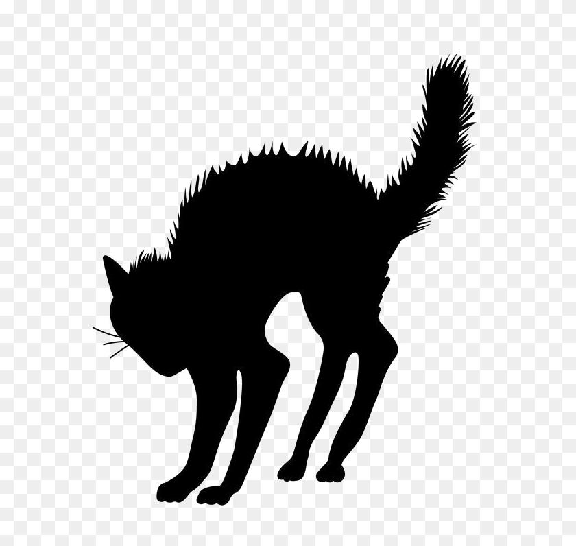 Halloween Black Cat Vector Free Transparent Image Vector, Clipart - Cat Vector PNG
