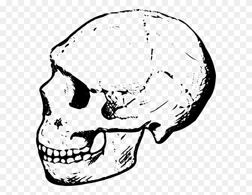 Halloween Skeleton Head Clipart - Skeleton Hand Clipart