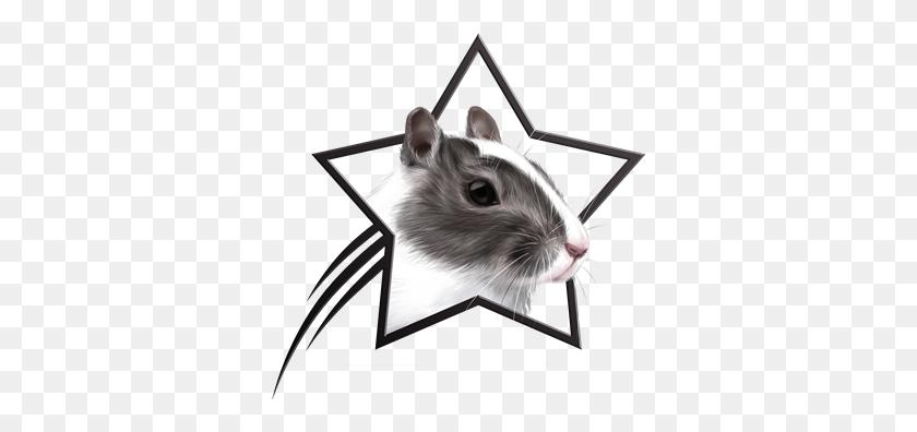 Hamster Clipart Gerbil - Gerbil Clipart
