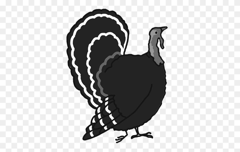 Happy Thanksgiving Clipart - Pilgrim Clipart Black And White