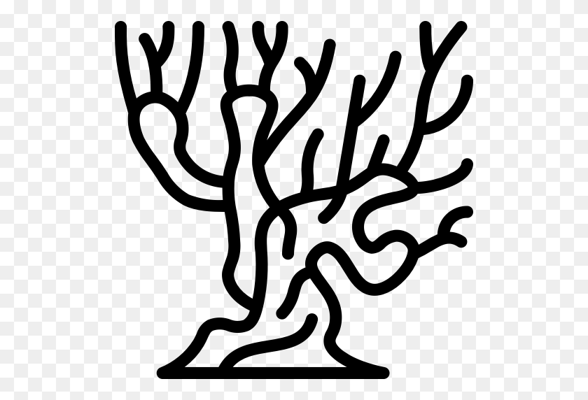 Harry, Outline, Potter, Tree, Whomping, Willow Icon - Tree Outline PNG