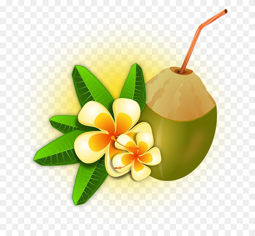 Hawaii Clipart Tropical Drink - Tropical Border Clipart