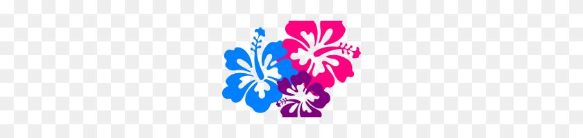 Hawaiian Flowers Clip Art Hawaiian Flower Clip Art Borders Clipart - Free Hawaiian Clip Art