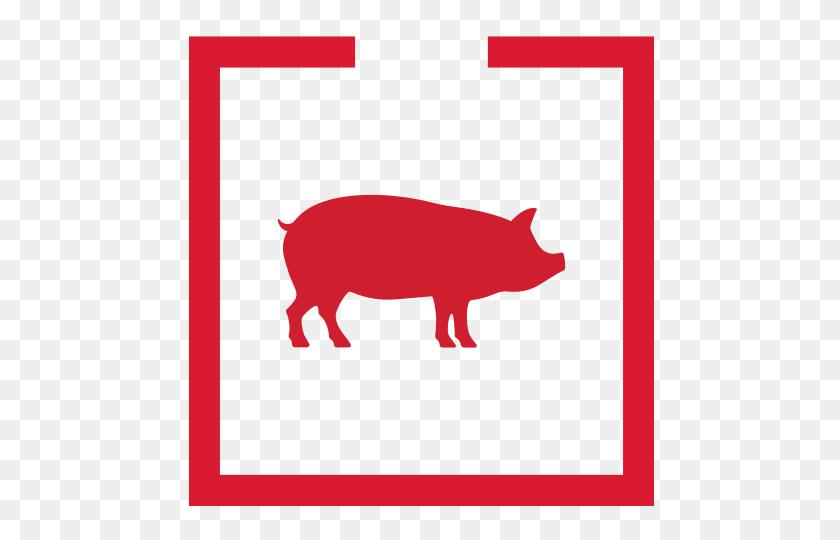 Herd Clipart Pig Pen - Pig Pen Clipart