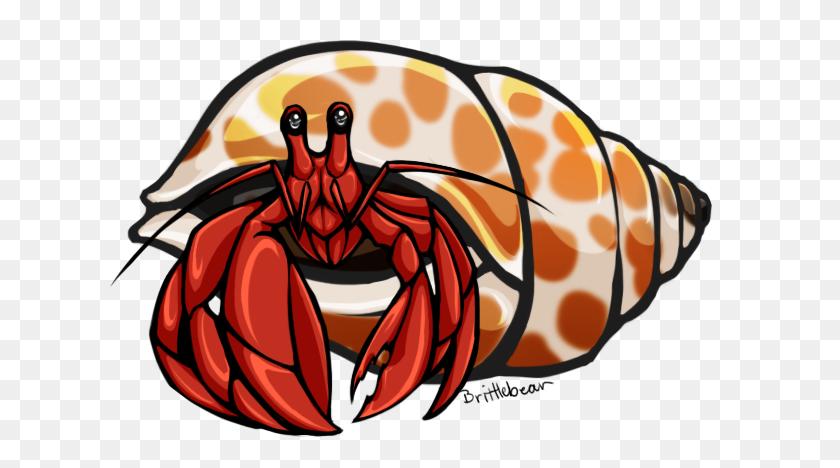 Hermit Crab Clip Art - Crab Clipart PNG