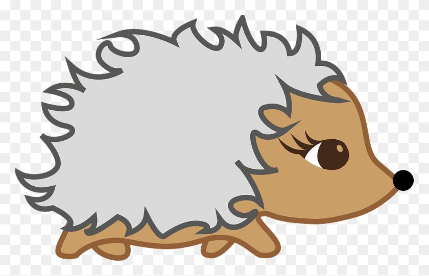 Hibernation Clip Art