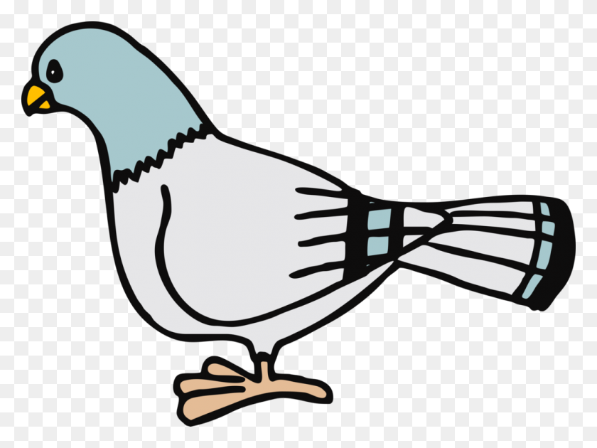 Homing Pigeon Columbidae Bird Don't Let The Pigeon Drive The Bus - Loon Clipart