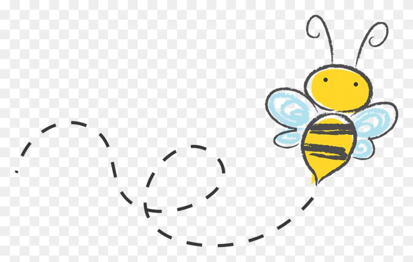1000x607 Honeycomb Clipart Teacher - Look At Teacher Clipart