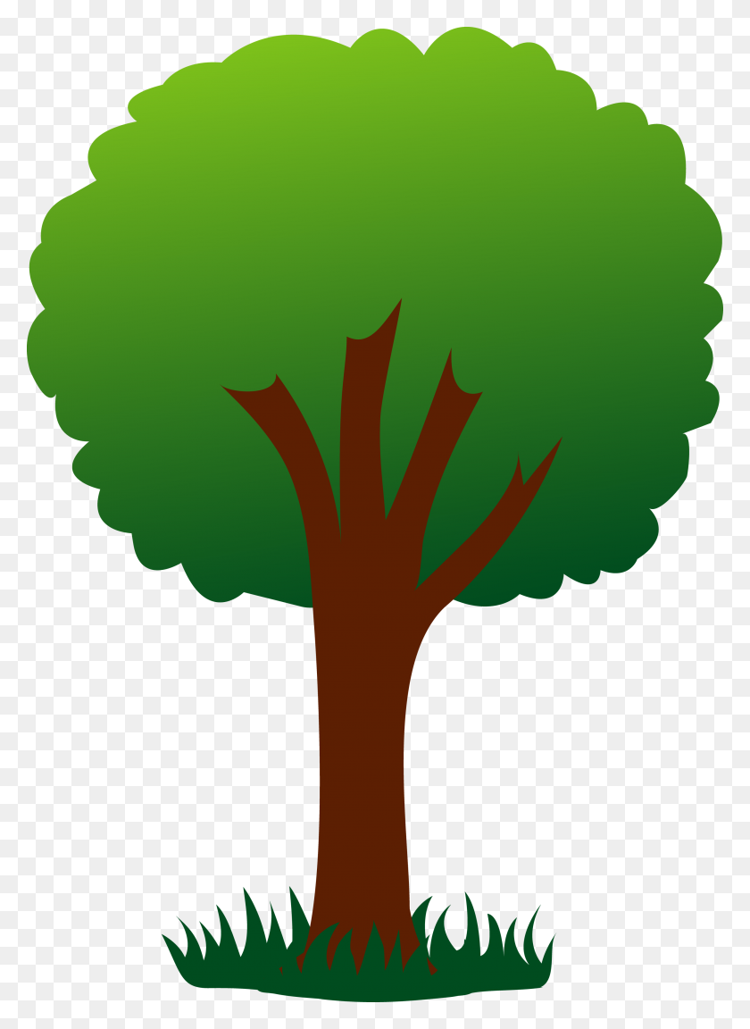 2856x4000 How To Draw An Oak Tree, Step - Pop Culture Clipart