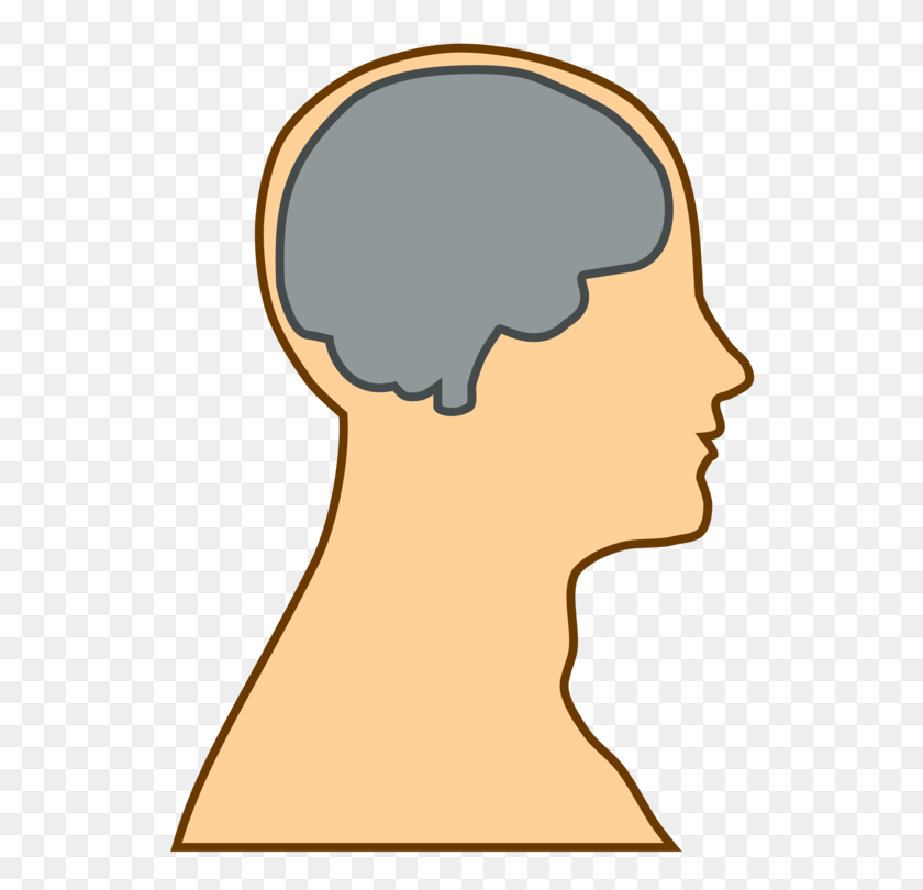 Human Brain Human Head Human Body Computer Icons - Throat Clipart