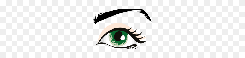 Human Eye Clip Art Human Eye Eyebrow Eyelid Organ - Organ Clipart