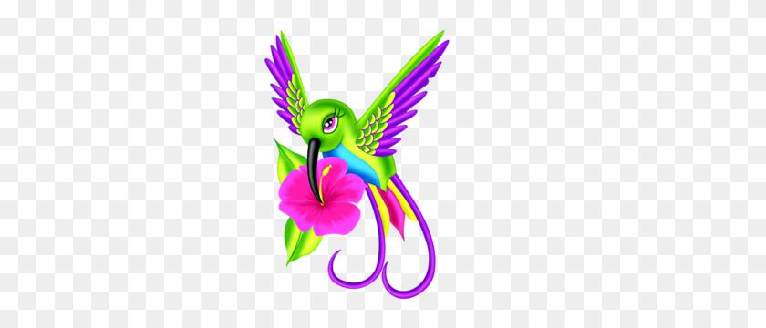 Hummingbird Clip Art Clip Art - Hummingbird Clipart