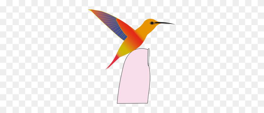 Hummingbird Pictures Clip Art - Hummingbird Clipart